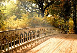 Bridge by xch.hu