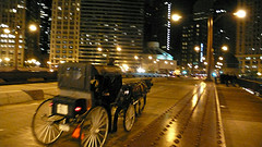 horse and carriage by Andrew Dubber
