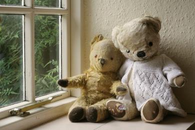 old_bears