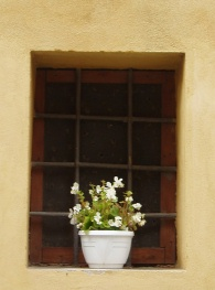 flower_in_window-Italian_village