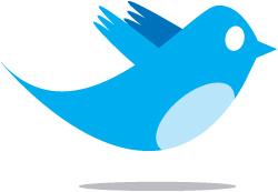 2034452099_634a614e91_large-twitter-bird