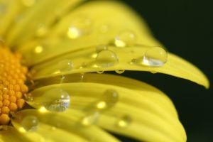 554170_droplets