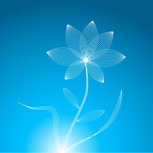 1216059_flower_illustration