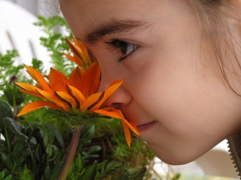 bigstock-Girl-Smelling-Flower-513038