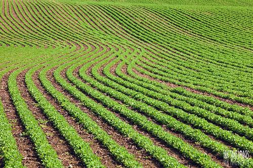 acres of farmland