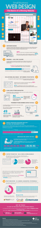 infographic - basics of a winning website