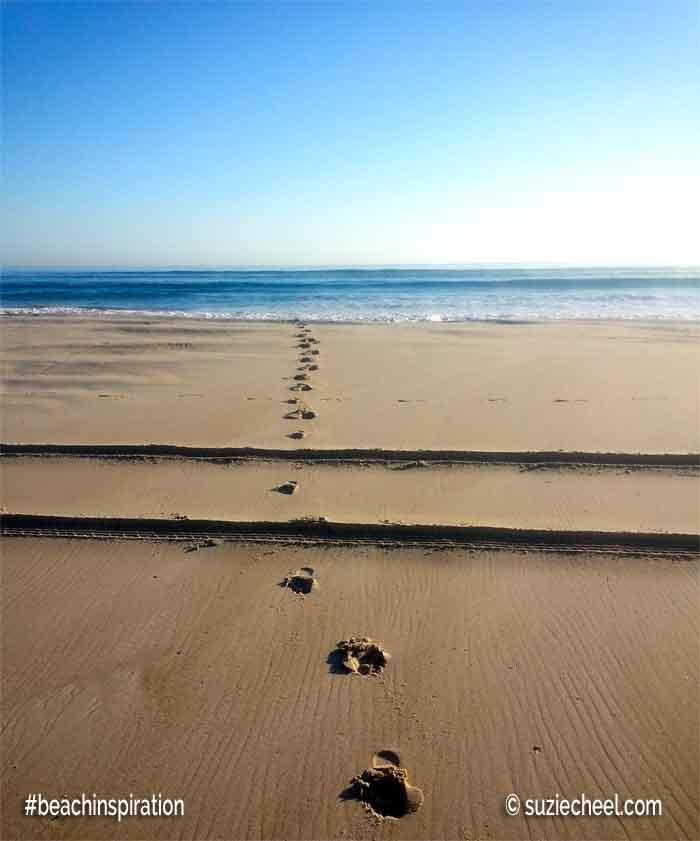 beach tracks